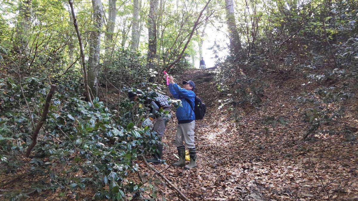 登山道の整備