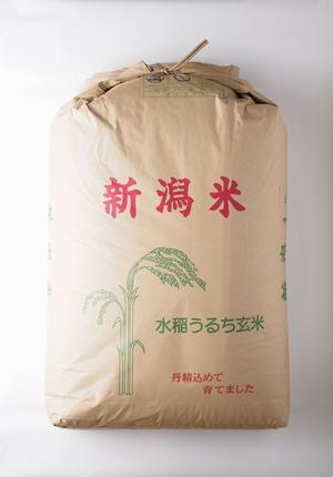 はさかけ米玄米30kg
